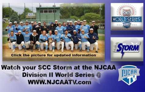 Storm Baseball punches ticket to World Series