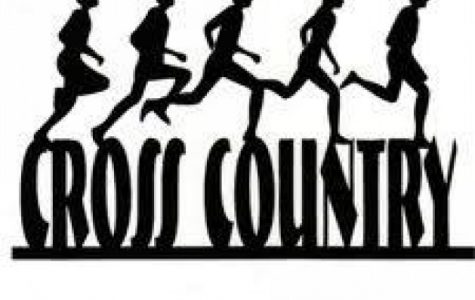 Cross country comes to Beatrice