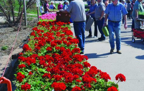 Beatrice flower sale displays students' green thumbs