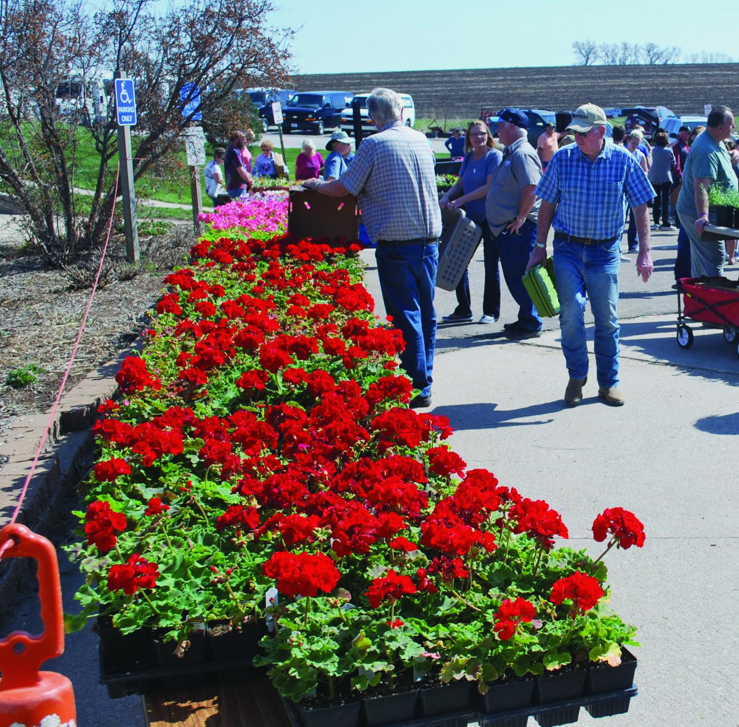 The annual spring flower sale hosted by horticulture students offered more than 10,000 plants and herbs.